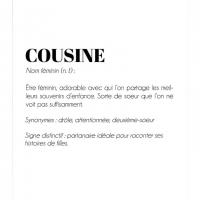 De finition cousine lcf209 1